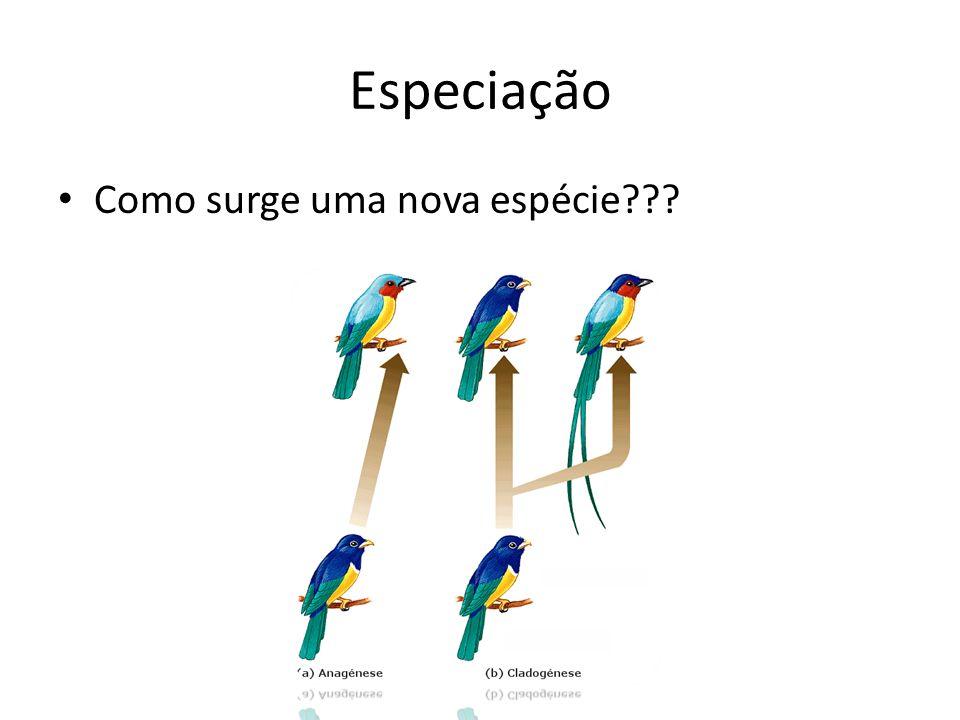 Especiação Como surge uma nova espécie