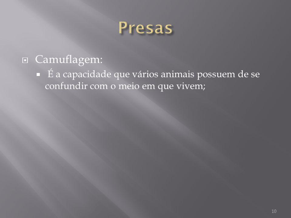 Presas Camuflagem: É a capacidade que vários animais possuem de se confundir com o meio em que vivem;
