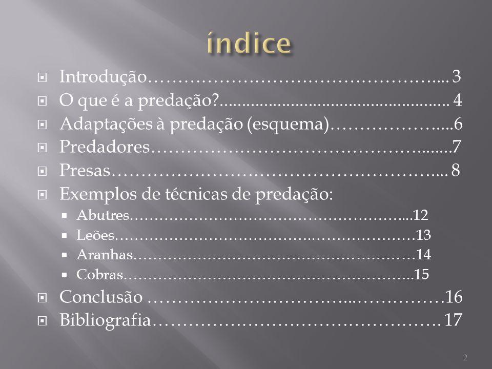 índice Introdução………………………………………….... 3