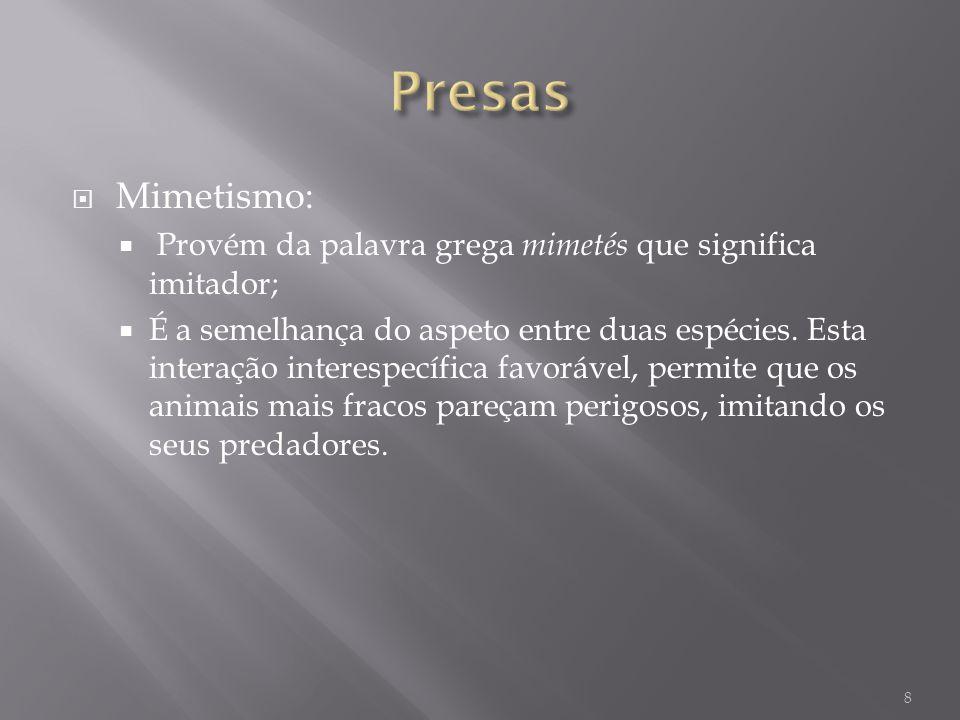 Presas Mimetismo: Provém da palavra grega mimetés que significa imitador;