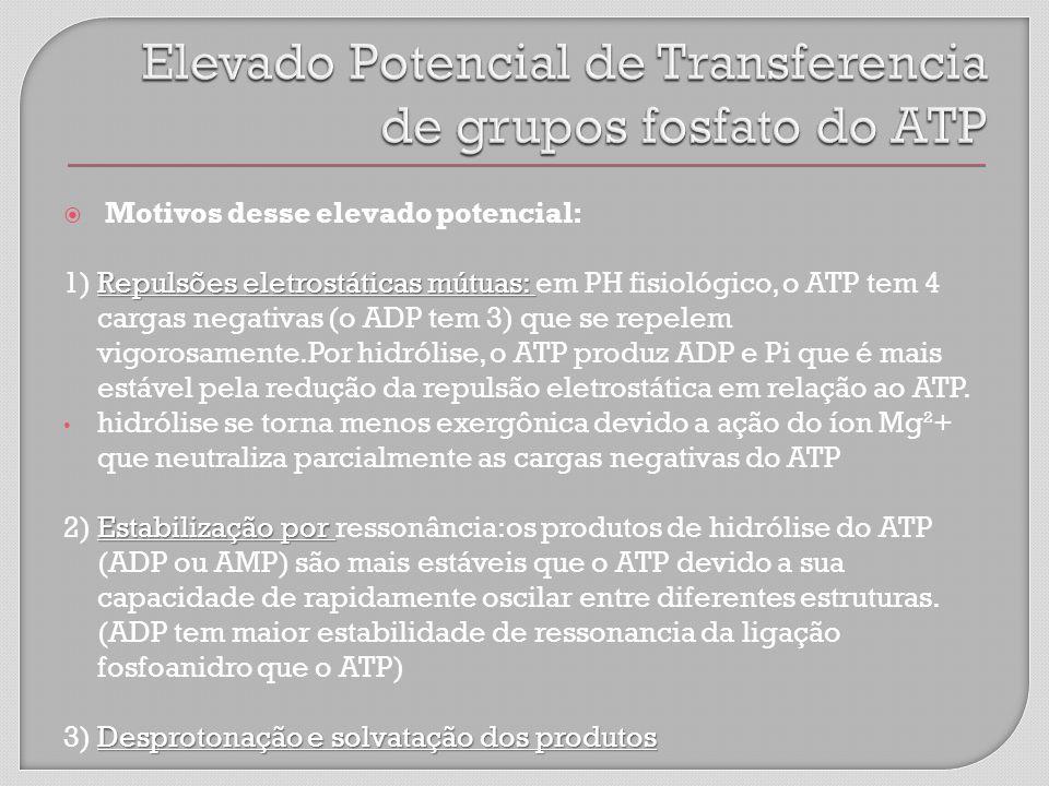 Elevado Potencial de Transferencia de grupos fosfato do ATP
