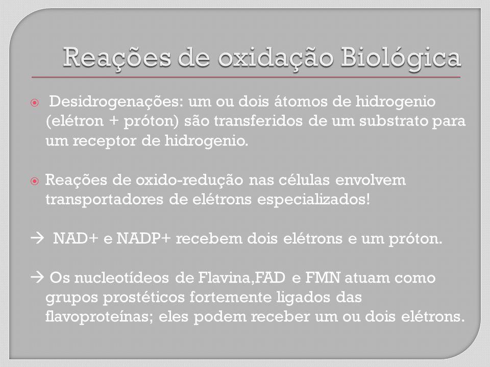 Reações de oxidação Biológica
