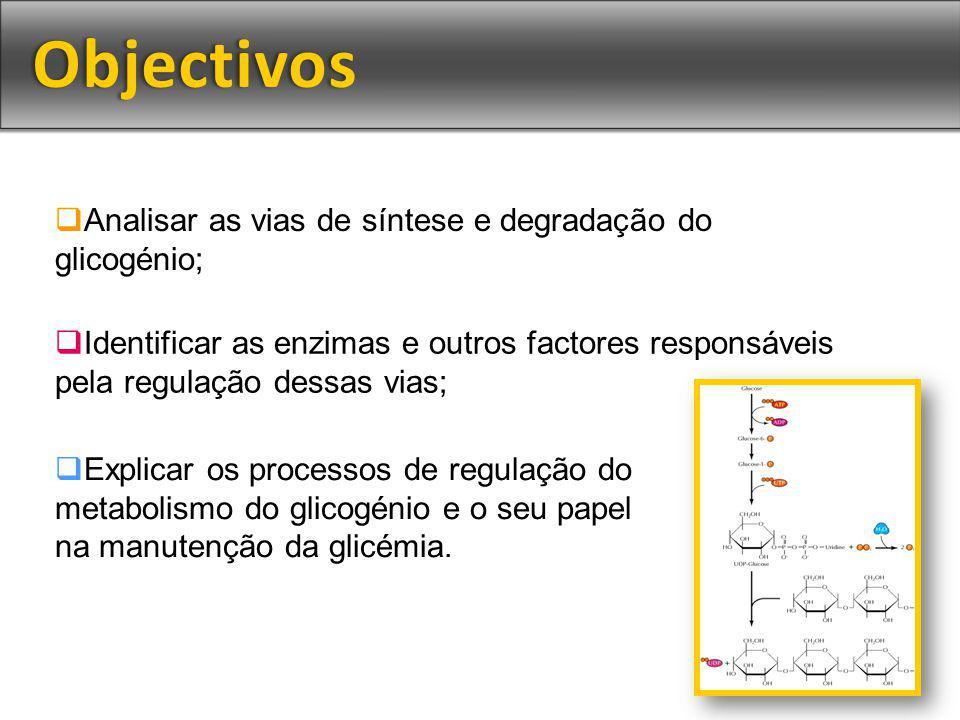 Objectivos Analisar as vias de síntese e degradação do glicogénio;