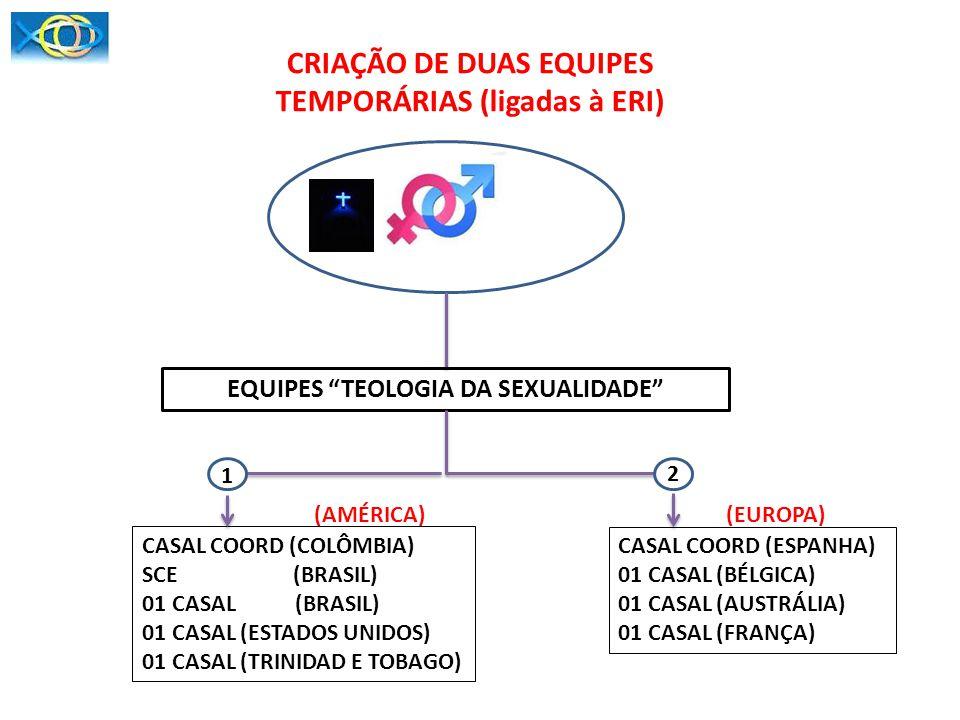 CRIAÇÃO DE DUAS EQUIPES TEMPORÁRIAS (ligadas à ERI)