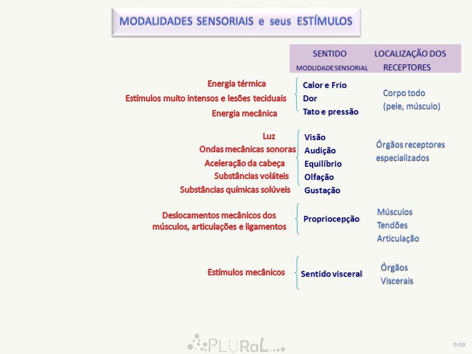 MODALIDADES SENSORIAIS e seus ESTÍMULOS