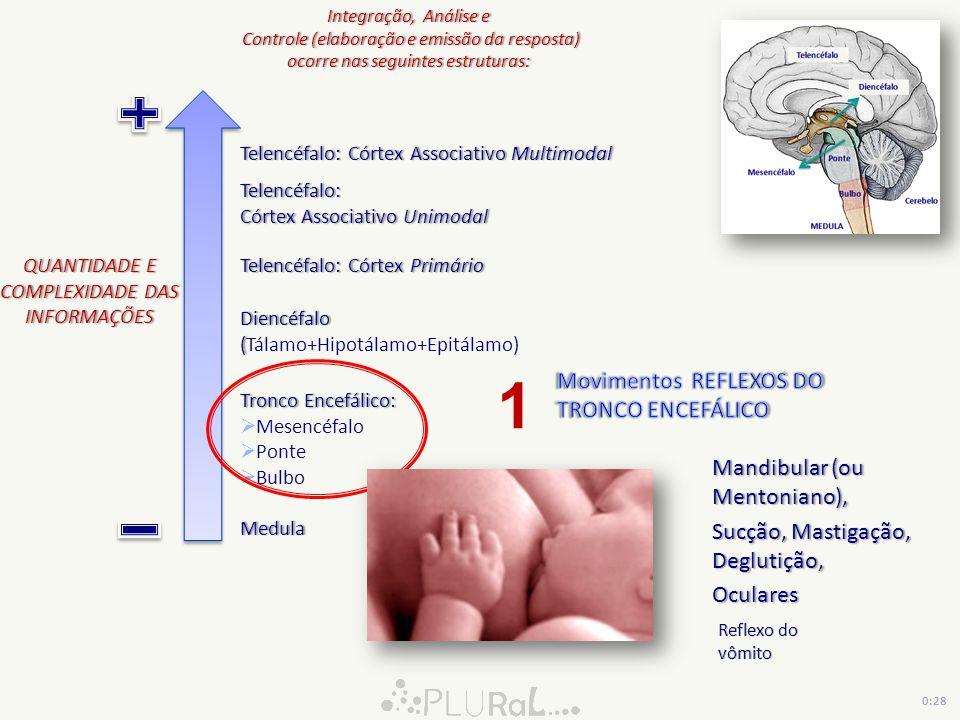 1 Movimentos REFLEXOS DO TRONCO ENCEFÁLICO Mandibular (ou Mentoniano),