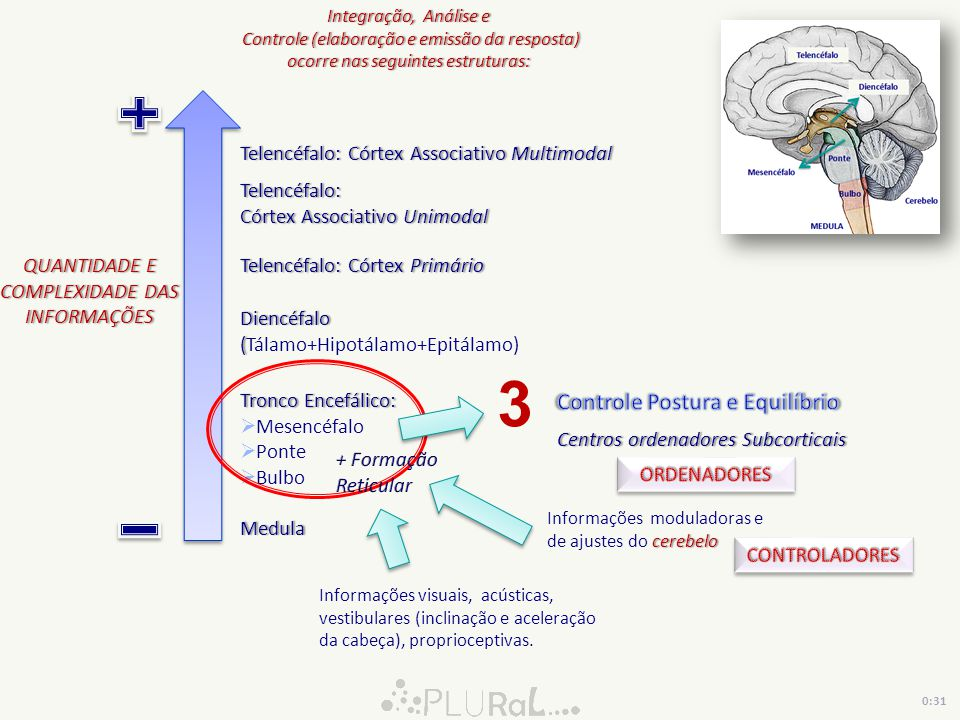 3 Controle Postura e Equilíbrio