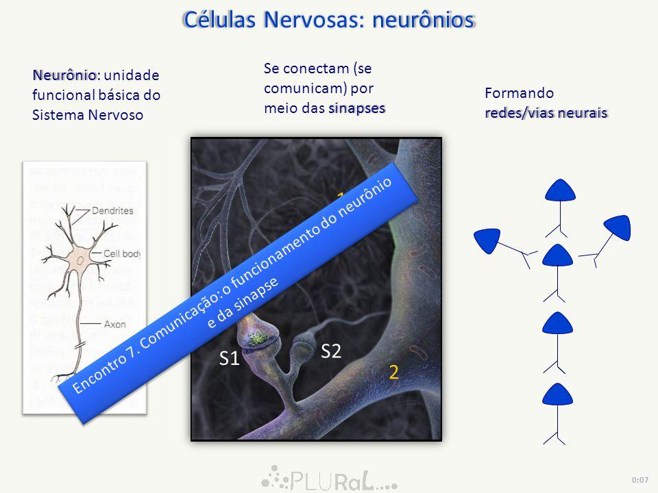 Células Nervosas: neurônios