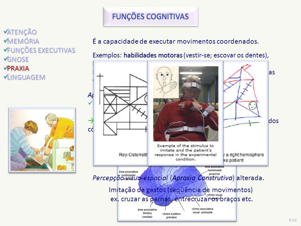 FUNÇÕES COGNITIVAS ATENÇÃO MEMÓRIA FUNÇÕES EXECUTIVAS