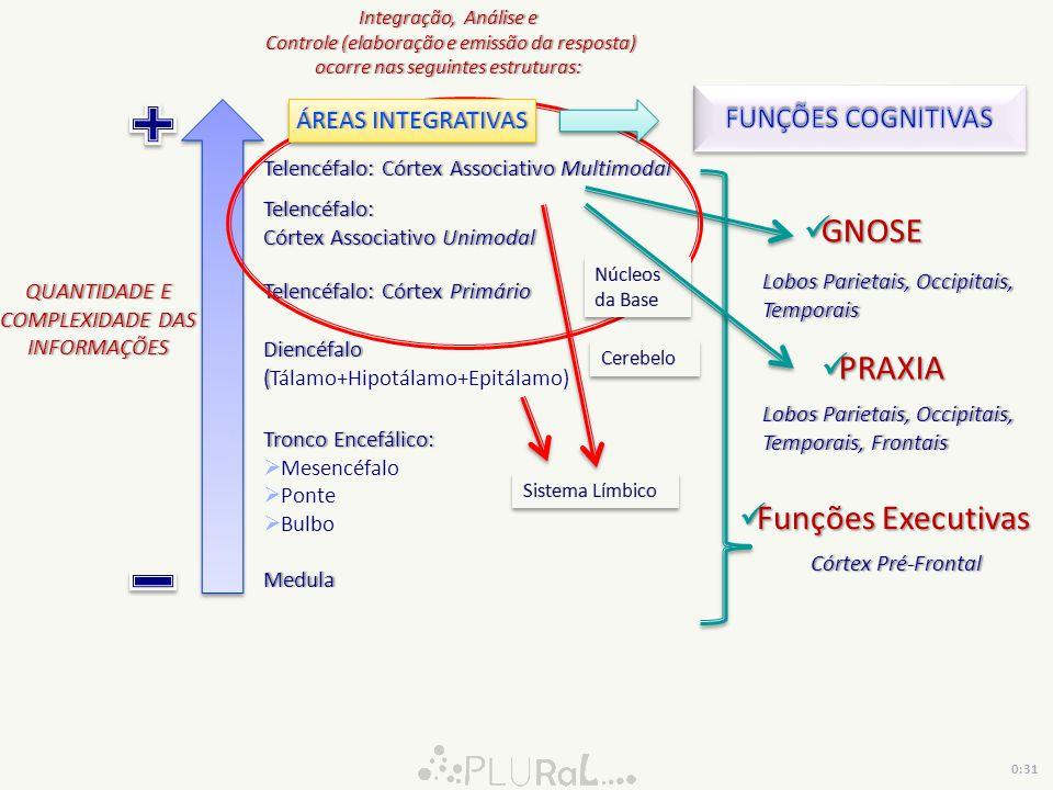 GNOSE PRAXIA Funções Executivas FUNÇÕES COGNITIVAS ÁREAS INTEGRATIVAS