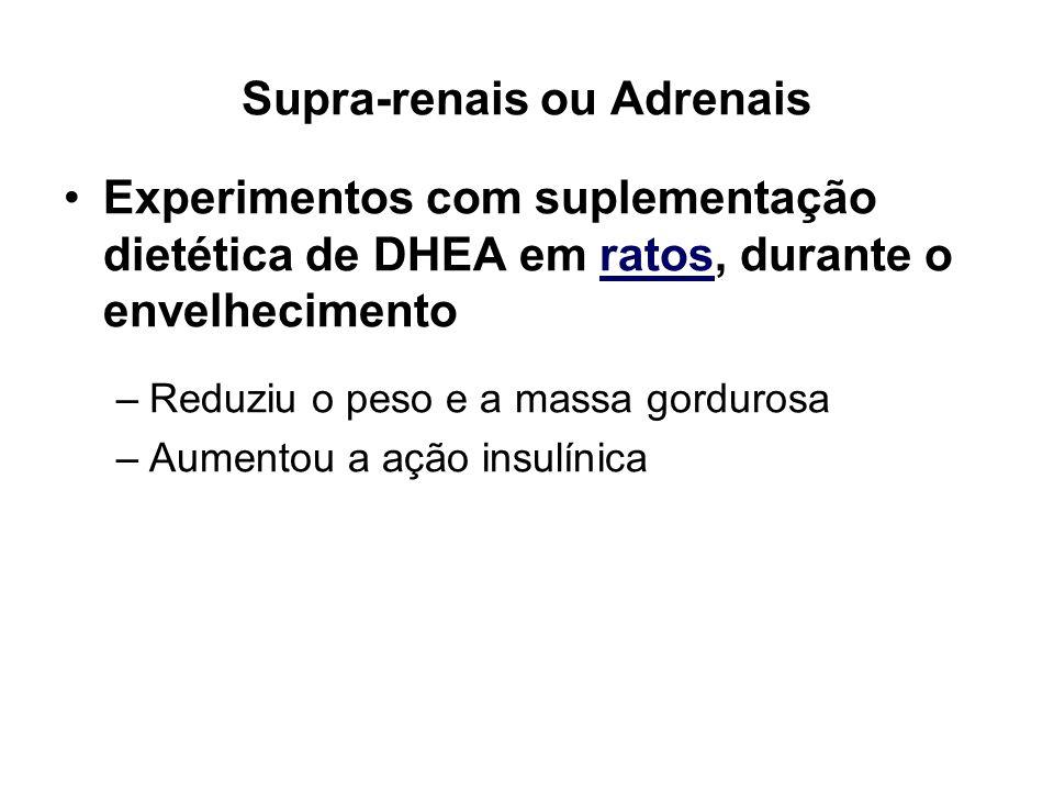 Supra-renais ou Adrenais