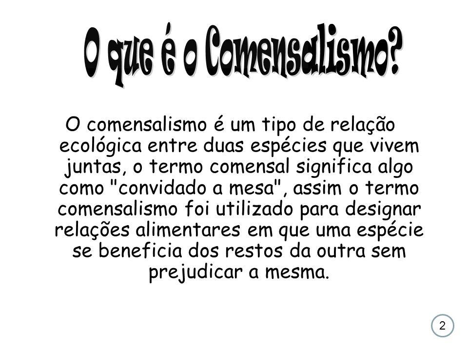 O que é o Comensalismo