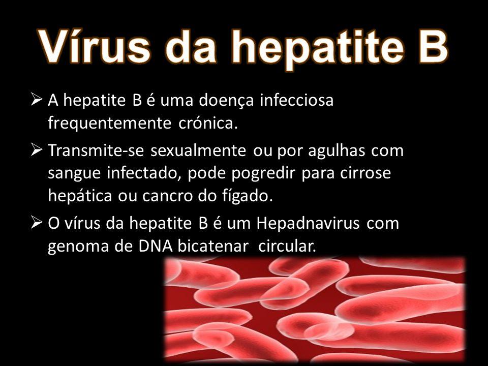 Vírus da hepatite B A hepatite B é uma doença infecciosa frequentemente crónica.