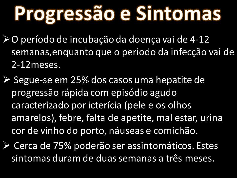 Progressão e Sintomas O período de incubação da doença vai de 4-12 semanas,enquanto que o periodo da infecção vai de 2-12meses.