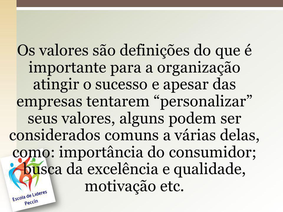 Os valores são definições do que é importante para a organização atingir o sucesso e apesar das empresas tentarem personalizar seus valores, alguns podem ser considerados comuns a várias delas, como: importância do consumidor; busca da excelência e qualidade, motivação etc.