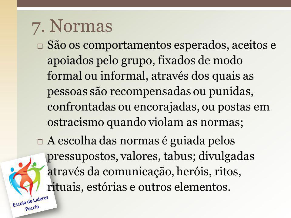 7. Normas