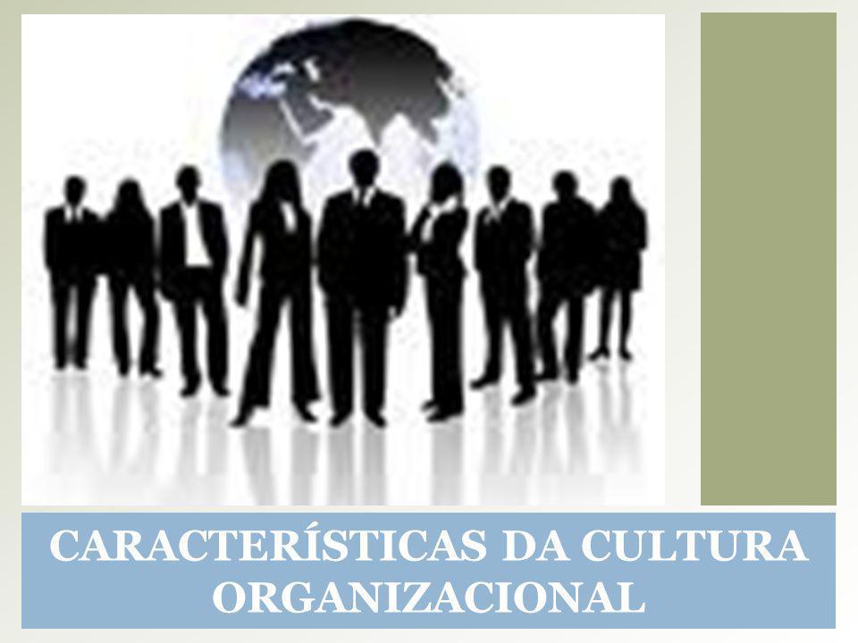 CARACTERÍSTICAS DA CULTURA ORGANIZACIONAL