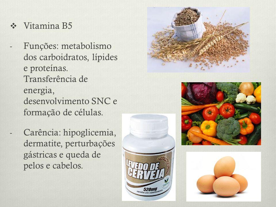 Vitamina B5 Funções: metabolismo dos carboidratos, lípides e proteínas. Transferência de energia, desenvolvimento SNC e formação de células.