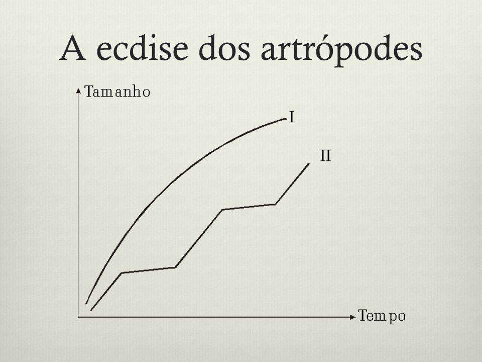 A ecdise dos artrópodes