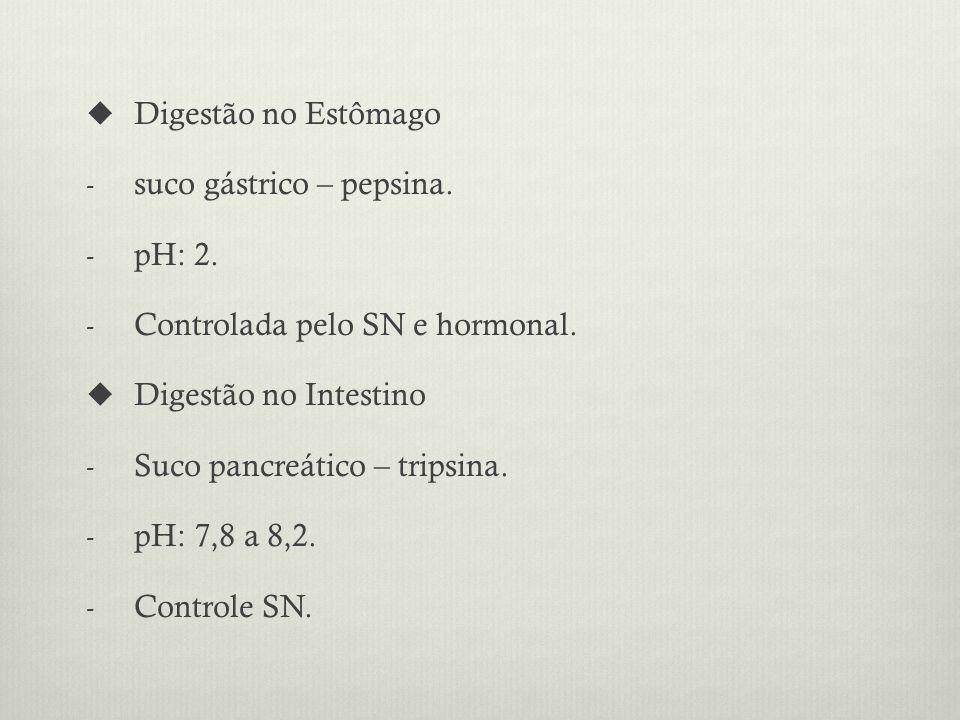 Digestão no Estômago suco gástrico – pepsina. pH: 2. Controlada pelo SN e hormonal. Digestão no Intestino.