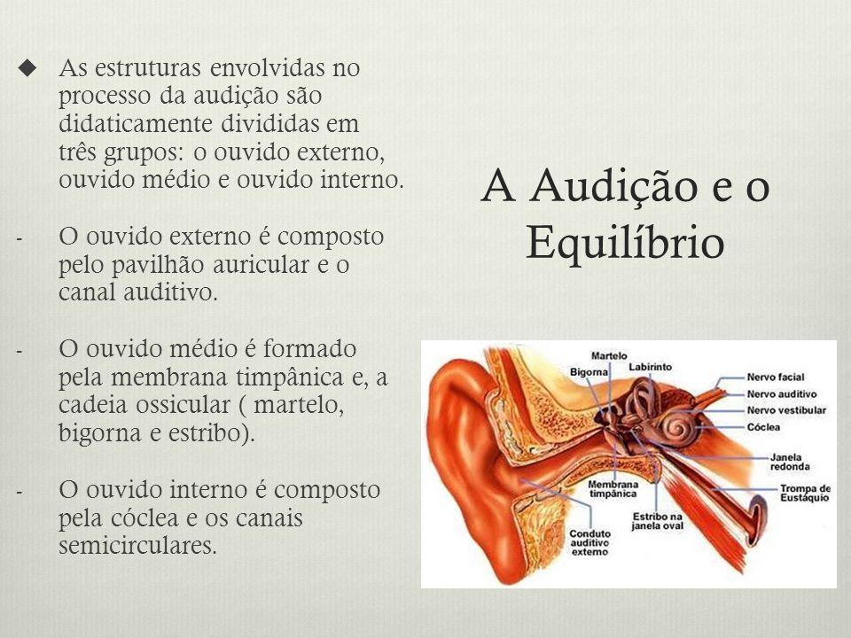 A Audição e o Equilíbrio