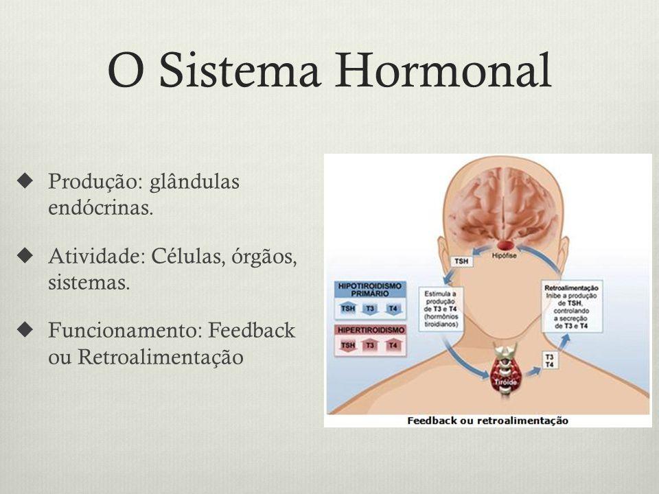 O Sistema Hormonal Produção: glândulas endócrinas.