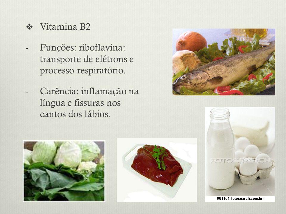 Vitamina B2 Funções: riboflavina: transporte de elétrons e processo respiratório.