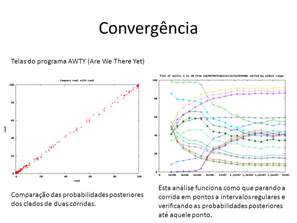 Convergência Telas do programa AWTY (Are We There Yet)