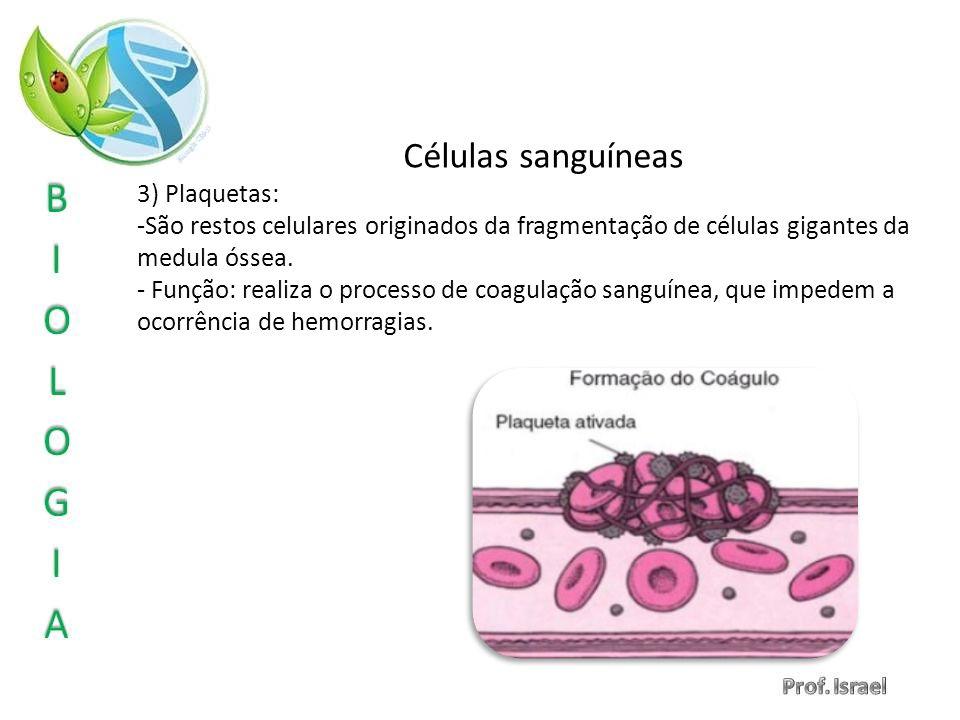 Células sanguíneas 3) Plaquetas: