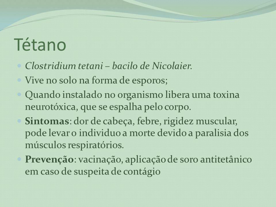 Tétano Clostridium tetani – bacilo de Nicolaier.