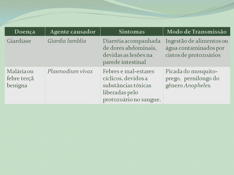 Doença Agente causador. Sintomas. Modo de Transmissão. Giardíase. Giardia lamblia.