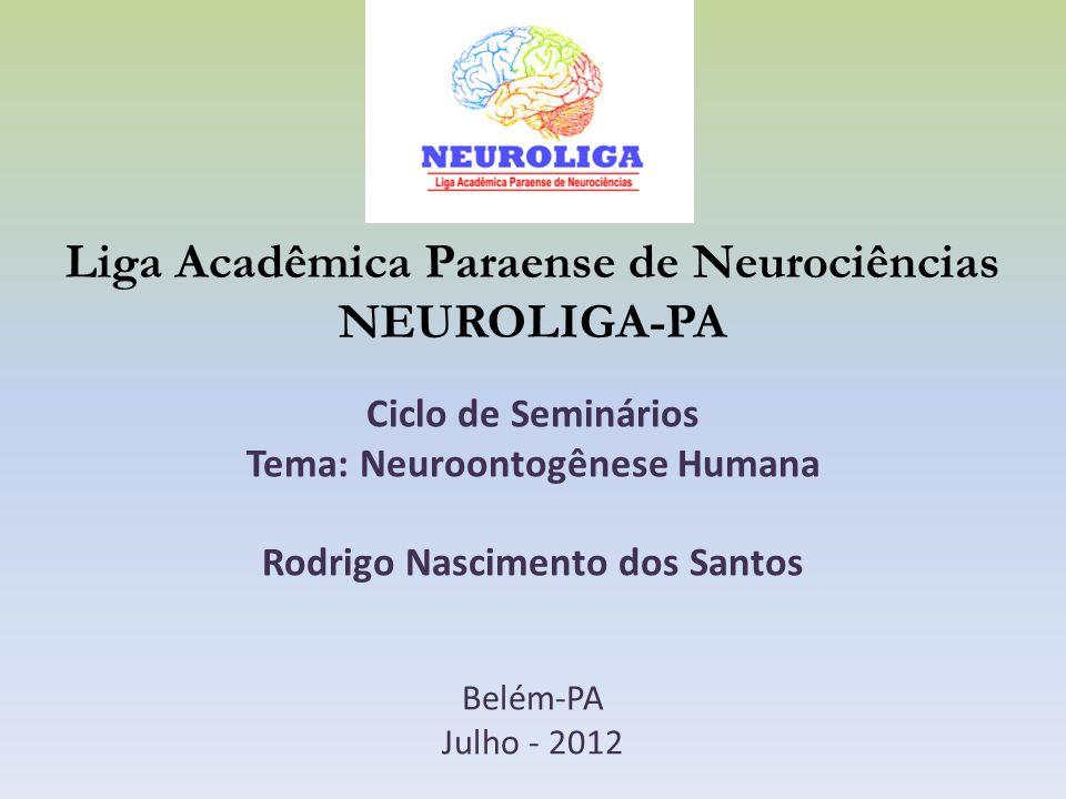 Liga Acadêmica Paraense de Neurociências NEUROLIGA-PA