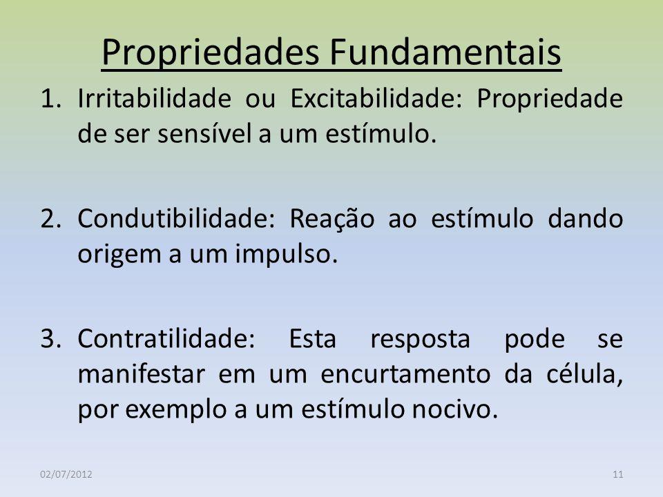 Propriedades Fundamentais