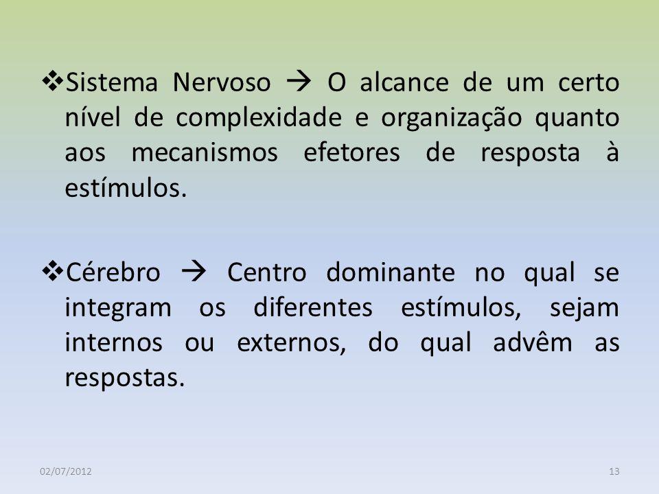 Sistema Nervoso  O alcance de um certo nível de complexidade e organização quanto aos mecanismos efetores de resposta à estímulos.