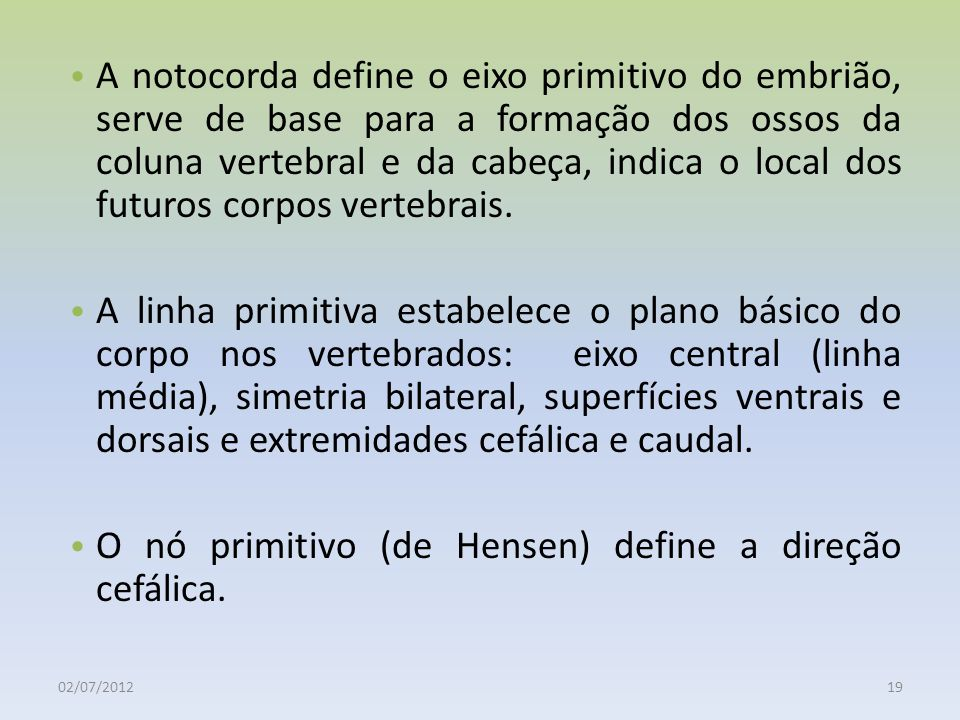 O nó primitivo (de Hensen) define a direção cefálica.