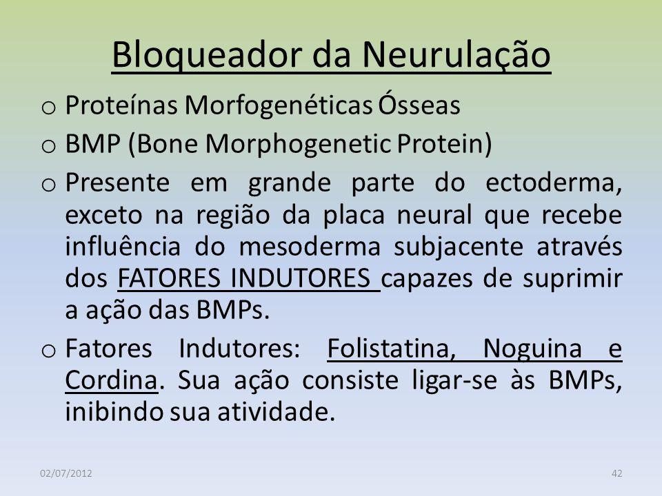 Bloqueador da Neurulação