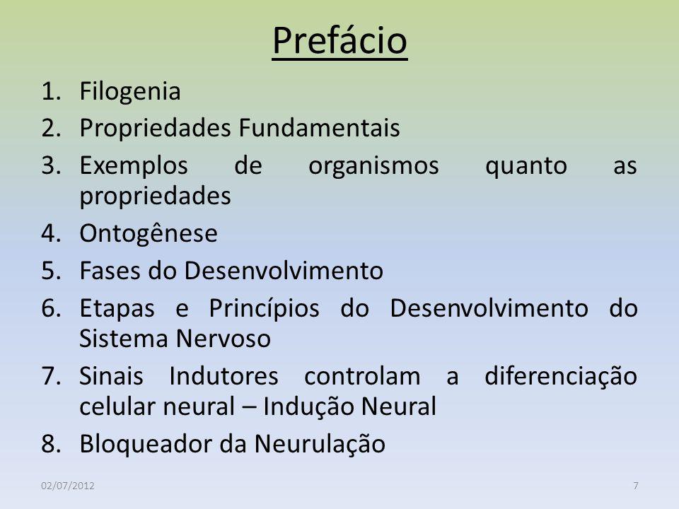 Prefácio Filogenia Propriedades Fundamentais