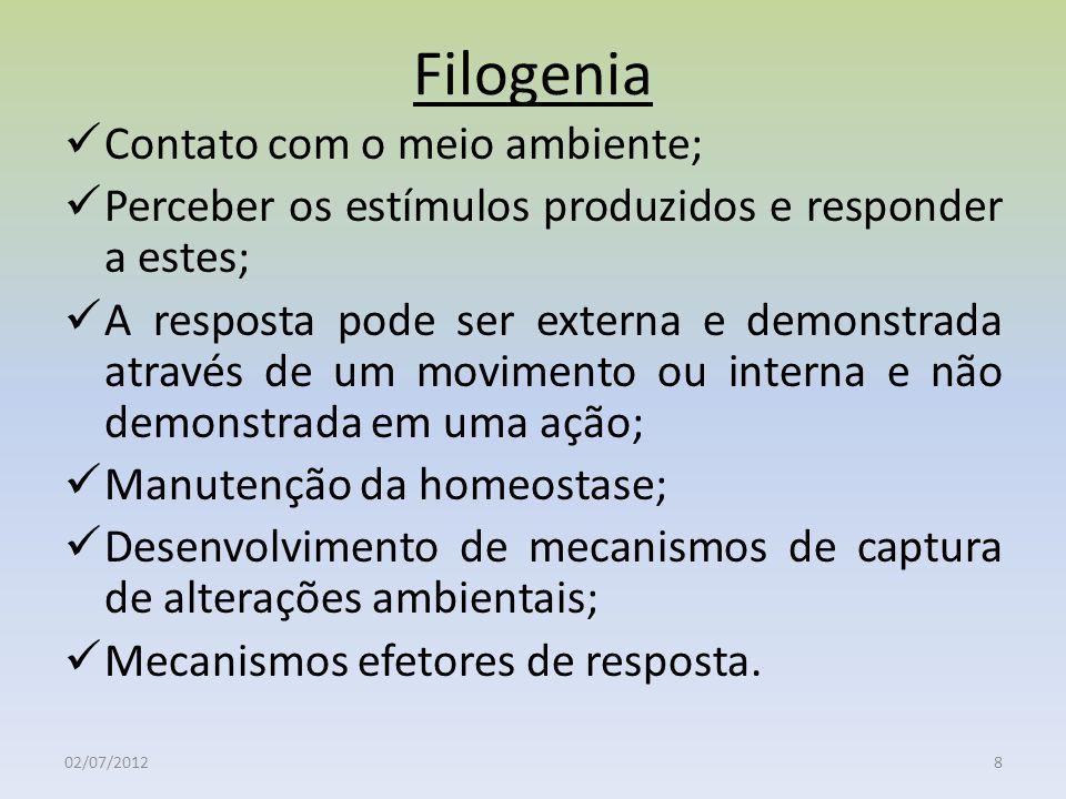 Filogenia Contato com o meio ambiente;
