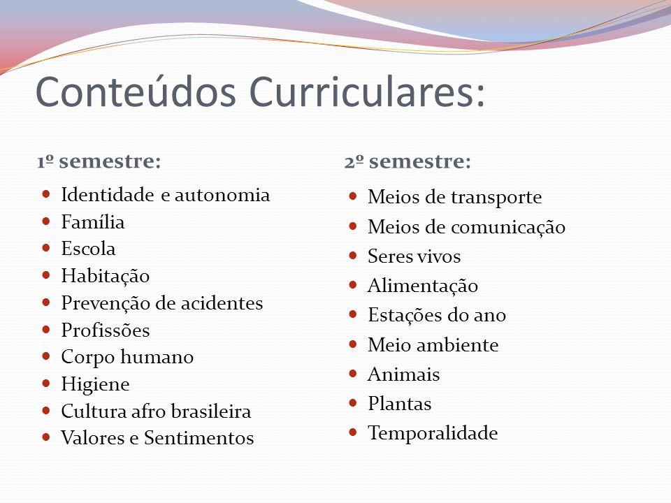 Conteúdos Curriculares: