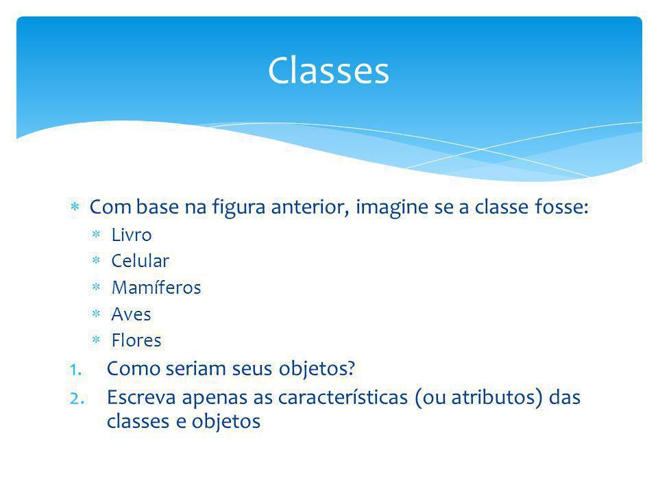 Classes Com base na figura anterior, imagine se a classe fosse: