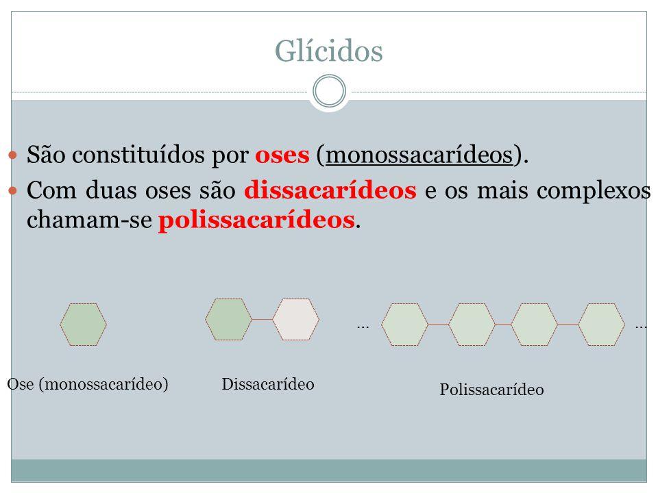 Glícidos São constituídos por oses (monossacarídeos).