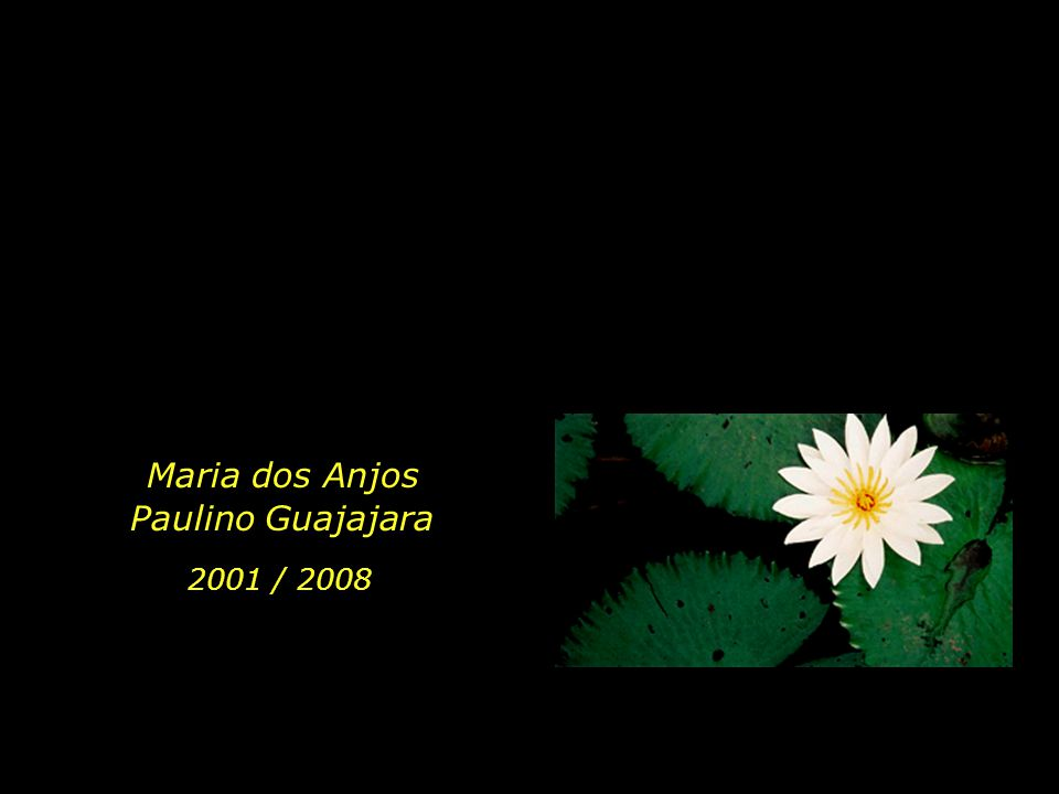 Maria dos Anjos Paulino Guajajara