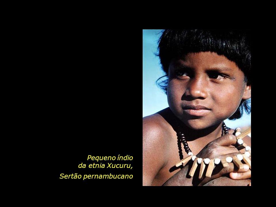 Pequeno índio da etnia Xucuru,