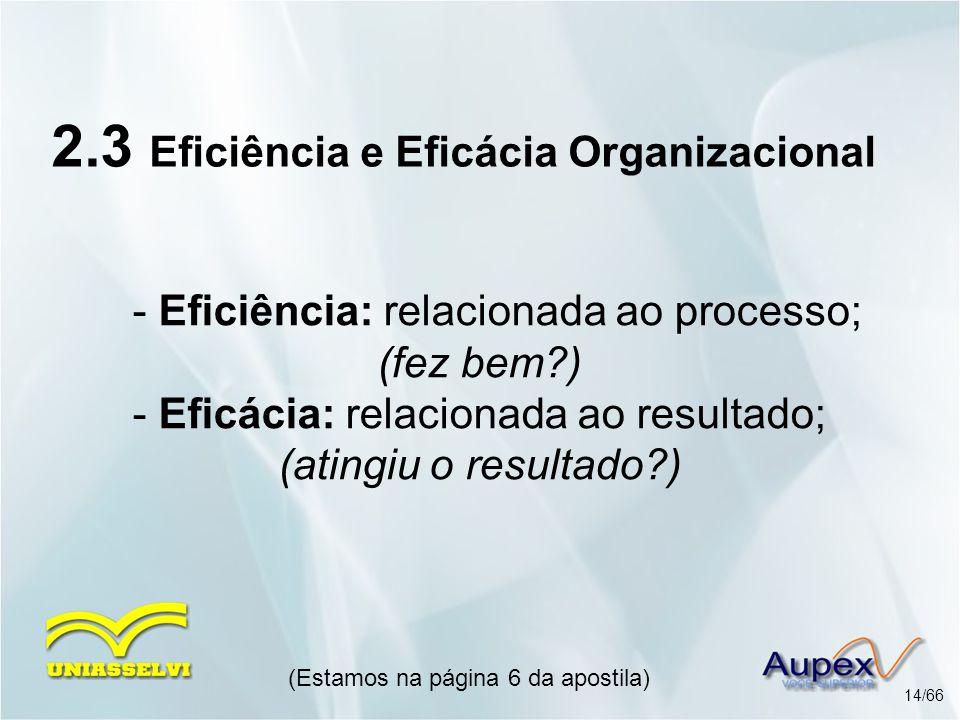 2.3 Eficiência e Eficácia Organizacional
