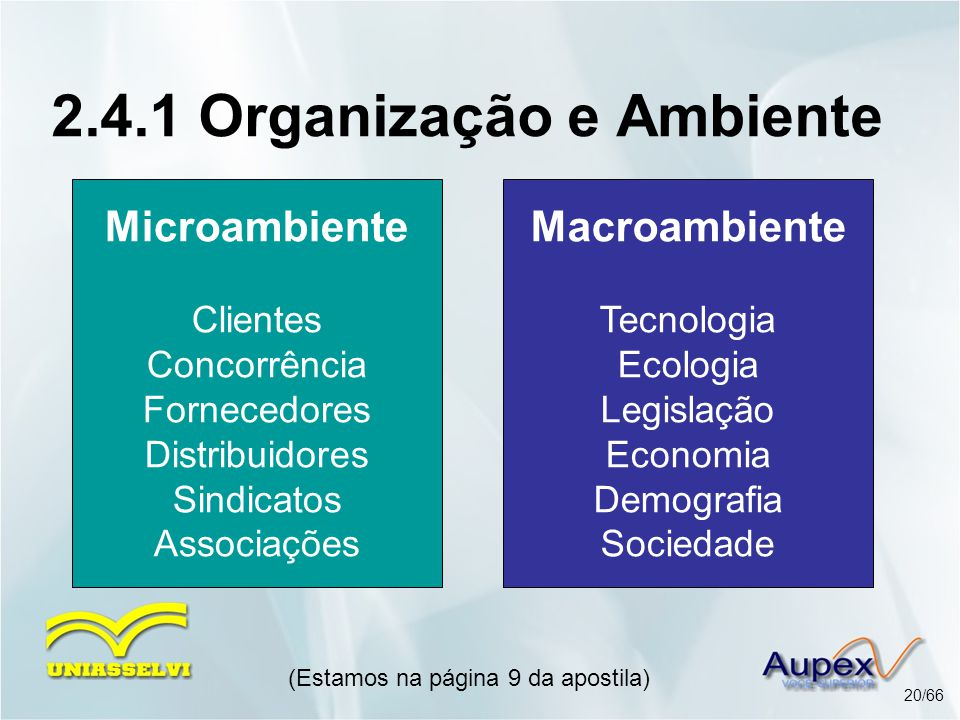 2.4.1 Organização e Ambiente