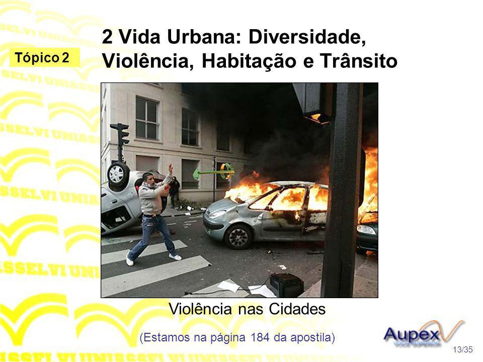 2 Vida Urbana: Diversidade, Violência, Habitação e Trânsito