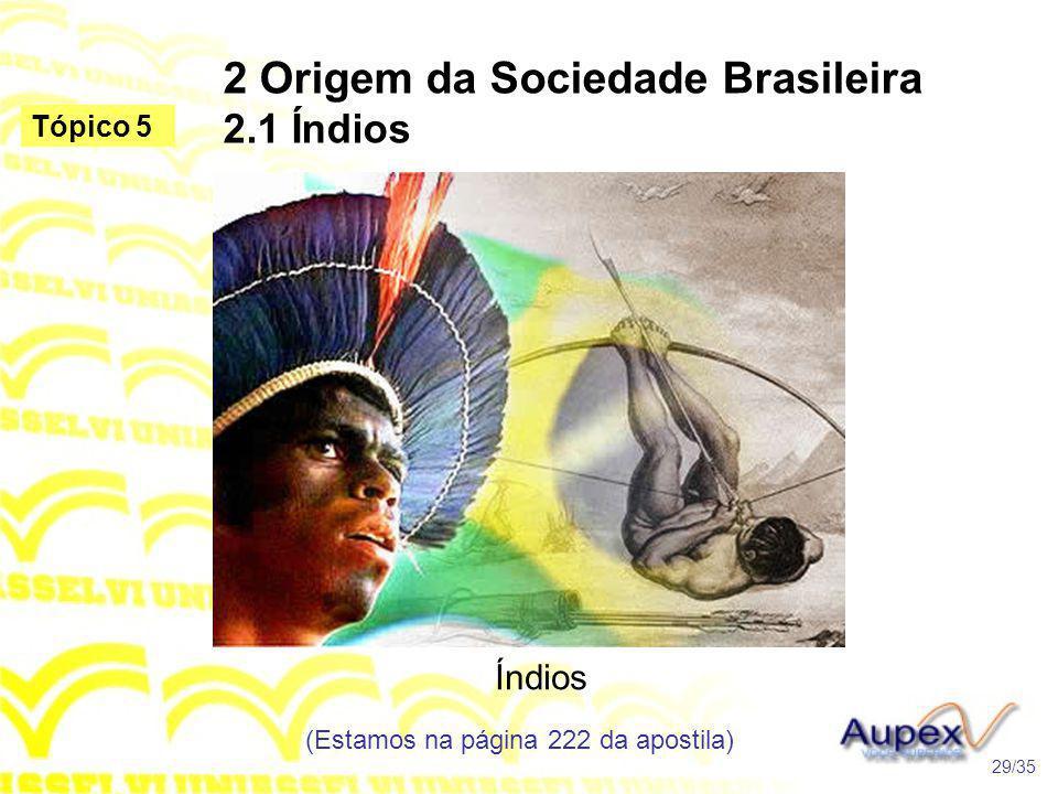 2 Origem da Sociedade Brasileira 2.1 Índios