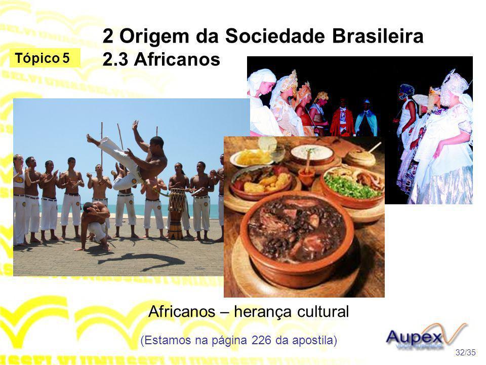 2 Origem da Sociedade Brasileira 2.3 Africanos