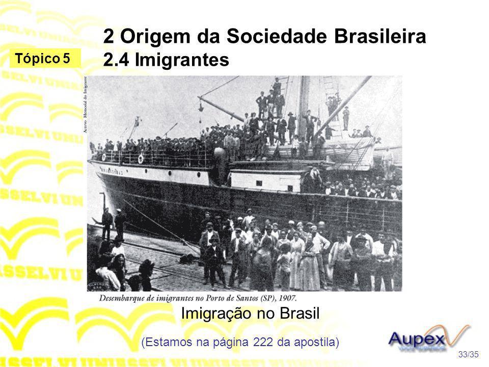 2 Origem da Sociedade Brasileira 2.4 Imigrantes