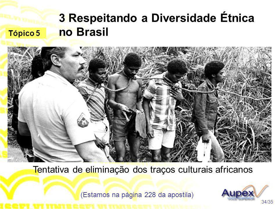 3 Respeitando a Diversidade Étnica no Brasil